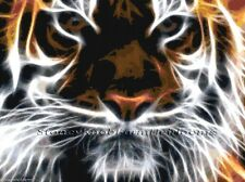 Tiger Fractal ~ Cats ~ Counted Cross Stitch Pattern