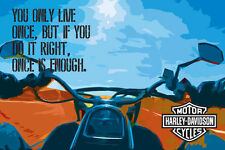 Harley Davidson Original Poster - You Only Live Once Poster -Jack of All Posters