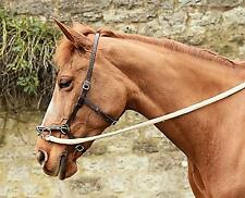 In-hand schooling pack A - French baroque lunge cavesson, 4M softy line & Book
