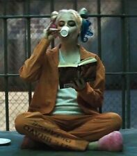 HARLEY QUINN SUICIDE SQUAD Ladies CUSTOM PRINT Prison COSTUME Halloween Cosplay