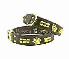 BROWN LEATHER DOG COLLAR ENGLISH BULL TERRIER BRASS COWHIDE PADDED