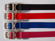 Ancol Dog Collar Plain Nylon Strong  Flat Buckle 6 Sizes 4 Colours