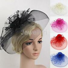 Flower Dot Feather Mesh Fascinator Hat on Clips Royal Ascot Veil Net Hairdress