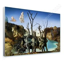 CANVAS +GIFT Swans Reflecting Elephants Salvador Dali Poster Paintings Prints