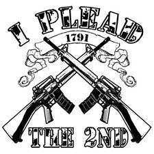 I Plead The 2nd AR-15 Rifles Second Amendment Gun Rights Patriotic T-Shirt Tee