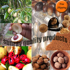 Whole Nutmeg Grade A Quality, Organic Herbs & Spices Free Shipping
