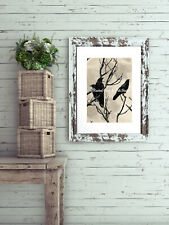 Contemporary Birds Three Crows Moon Black Ivory Home Decor Matted Picture A646
