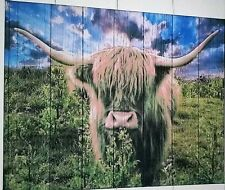 Highland Cow, Toffee Coo Canvas Wall Art Animal Picture Large Print Medium size