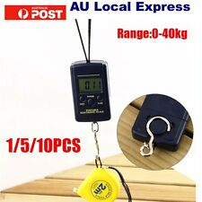 10g 40Kg Pocket Digital Scale Electronic Hanging Luggage Balance Weight  BS