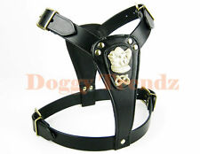 STAFFORDSHIRE BULL TERRIER LEATHER DOG HARNESS STAFFY