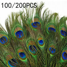 100/200PCS Wholesale Natural Real Peacock Tail Eye Feathers 25-30cm/10-12Inches
