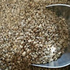 Green Coffee Beans - Ethiopia, Natural Genuine Longberry Harrar - Unroasted