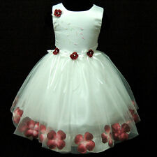 Red Recital Party Fancy Flower Girls Tulle Dress SZ 1-5