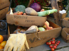 (NEW)Farmhouse Vegetable Basket ~ Trug/Box/Rack/Fruit and Veg ~ Old Rustic Charm