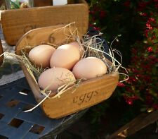 (NEW)Farmhouse 6 eggs tray / basket / box / holder~kitchen storage  Rustic Charm