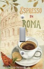 Light Switch Plate Switchplate Cover AUDIT - ESPRESSO IN ROMA COFFEE ~ FREE SHIP
