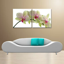 Orchid/Ready to Hang Digital Art Prints/2 Panel Set/for Upgrading Canvas Prints