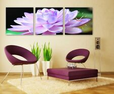 The Elegant Lotus wall Decorative Canvas Print Set High quality Framed