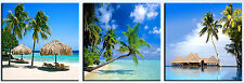 BEACH/PALM TREE  wall art print mounted on fiberboards/better than Canvas print