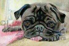 Chinese Pug Dog Art Print of Watercolor Painting Signed by Artist Judith Stein