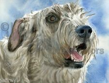 "Irish Wolfhound Dog Art Print of Watercolor Painting ""Colossal Canine"" k9stein"