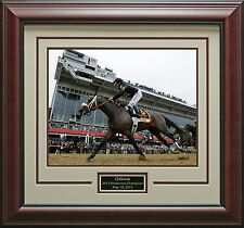 Preakness Stakes Champion Oxbow Photo Framed