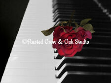 Contemporary Black & White Piano Keys w/ Red Rose Matted Picture Art Print A509