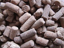 CHOC NIBBLES (ORIGINAL CHOCOLATE NUTS BISCUIT) WHOLESALE RETRO UK SWEETS CANDY