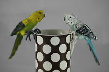 BUDGIE Mountable Gripping Budgies,  Bird Lovers  Gift / Wedding Favour- UNUSUAL?