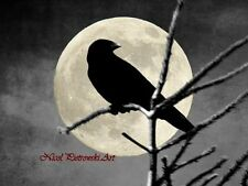 Crow on Spring Pine Branch & Moon Signed Original Matted Picture Art Print A584