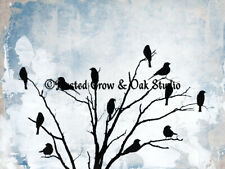 Blackbirds in Tree against Sky Choose Color Signed Original Matted Picture A503