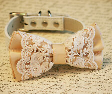 Ivory Lace Dog Bow Tie, Vintage Wedding, Ivory Wedding accessory, Ivory Wedding