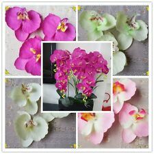 Lot 10/50 Wedding Fake Flowers Artificial Butterfly Orchids Home Party Decor DIY