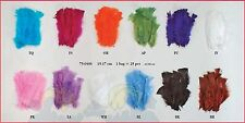 Small Feathers Quill Barb Ostrich Soft Fluffy Plumage Decoration Wedding Craft