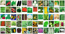Vegetable Seeds - Cabbages, Corn, Pumpkins, Melons, Beans, Radishes + Many More
