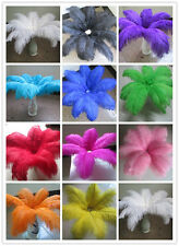 Wholesale beautiful ostrich feathers 35-40 cm / 14-16 inches in various colors