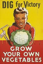 04 World War Poster  -  Grow Your Own Vegetables   *FREE POSTERS