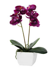 Artificial Orchid Plant in White Pot - 33cm High Potted Silk Flowers