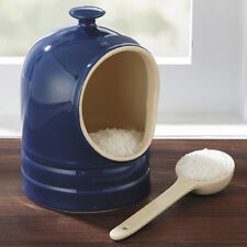 CHEFS Stoneware Salt Keeper/Pig with Spoon