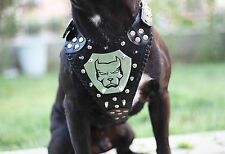 Swogz Prince Harness with Metal Pitbull head %100 Leather, %100 Handmade