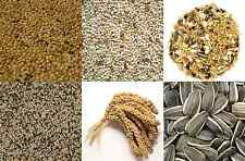 AVIARY BIRD FOOD BUDGIE MIXED CANARY FOREIGN FINCH SEED MILLET SPRAY FEED MIX