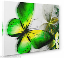 Butterfly Abstract Canvas Floral Wall Art Print Blends of Green Yellow a1 a2