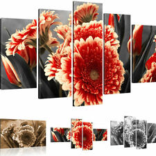 Mural Gerbera Flowers pictures on Canvas Canvas
