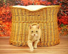 Superior Wicker Cat Tower Bed Basket House willow 2 Sizes + cushions