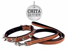 Leather Dog Collar ID Tag Leash Set Lead Spiked Puppy Small Medium Large Brown