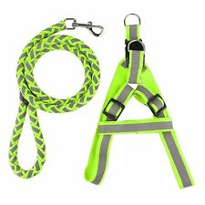 Adjustable Extendable Pet Leash Lead Training Walk Rope Dog Cat Collar Harness