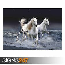MYSTIC HORSES (3665) Animal Poster -  Picture Poster Print Art A0 A1 A2 A3 A4