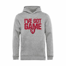 Harvard Crimson Youth Ash Got Game Pullover Hoodie