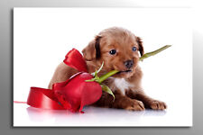 LARGE FREE P&P RED ROSE VALENTINE PUPPY DOG FLOWER CANVAS WALL ART PICTURE PRINT