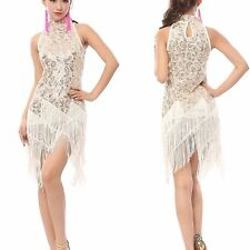 1920's Flapper Dress Gatsby Charleston Halloween Party Sequin Fringed Costumes